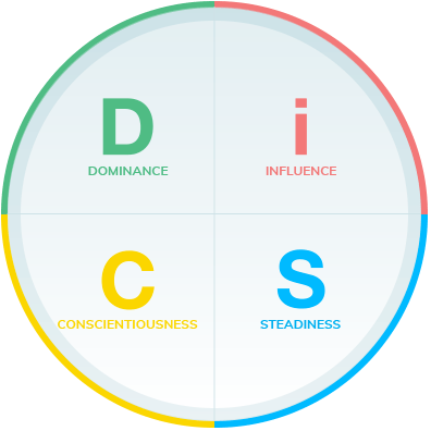 discover everything disc personality profile disc partner