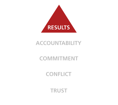 five behaviors of a cohesive team triangle results disc partners
